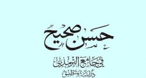 Hasan Sahih Fi Jami al Tirmidhi