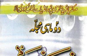 Zamzam Magazine,Maulana Abu Bakr Ghazipuri ra