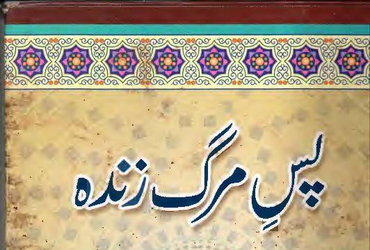 Pas-e-Marg Zindah , Maulana Noor Alam Khalil Amini