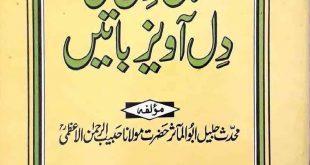 Ahl i Dil Ki Dil Awaiz Batain By Abul Maasir Maulana Habib ur Rahman Azmi ra
