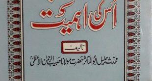 Husn i Adab Aur Us Ki Ahmiyyat By Abul Maasir Habib ur Rahman Azmi ra